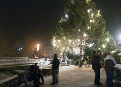 Christmas tree of Mogyoród in the main square - Mogyoród, Macaristan