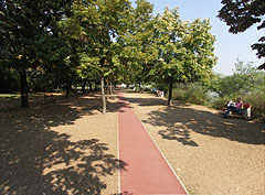 Tartan (plastic or rubbered) running track by the riverside of  the Danube - Budapest, Hongrie