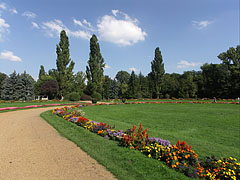 """Flowers on the Grat Meadow (in Hungarian """"Nagyrét"""") - Budapest, Hongrie"""
