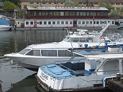 Hydrofoil and water bus boats at the Újpest harbour - Будапешт, Венгрия