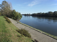 The bank of Dráva River at the train station and the boat station - Barcs, Ungarn