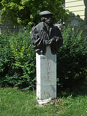 Bust statue of Martin Luther in the small park in front of the Evangelical Secondary School - Békéscsaba, Ungarn