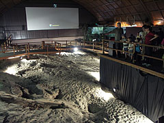 The exhibition space of the Great Hall, with a lot of prehistoric trackways and 3D movie screening - Ipolytarnóc, Ungari
