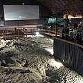 The exhibition space of the Great Hall, with a lot of prehistoric trackways and 3D movie screening - Ipolytarnóc, Ungarn