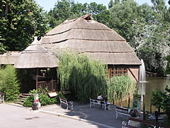 The Crocodile House with its tatched roof - Budapest, Ungern