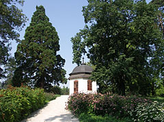 The pavilion on the King's Hill (the King's Pavilion or Royal Pavilion), beside it on the left a giant sequoia or giant redwood tree (Sequoiadendron giganteum) can be seen - Gödöllő, هنغاريا