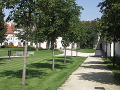 The park of the Gödöllő Palace with young horse chestnut alley - Gödöllő, هنغاريا