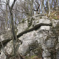 Layered limestone rocks on on the hillside of the valley - Bakony Mountains, Hungary