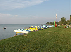 Grassy lakeshore on the free beach - Balatonlelle, Hungary