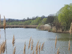 The Sinkár Lake is a water reservoir and a fishpond, it is located under the confluence of the Sinkáér Stream and the Mátyás-völgyi Stream - Csővár, Hungary