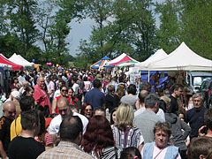 Bustle of the fair in the May Day picnic - Gödöllő, Hungary