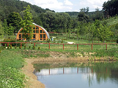 Miocene Forest with lake and greenhouse - Ipolytarnóc, Hungary