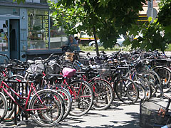 There are maybe more bicycles in a heap at the bus station than in the whole Netherlands - Nagykőrös, Hungary