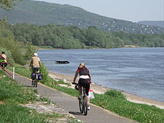 Bike path by the river - Nagymaros, Hungary