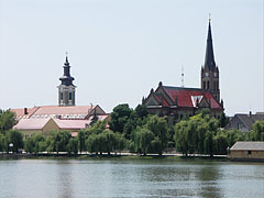 Promenade by the Danube with willow trees, as well as the towers of the Catholic and the Reformed churches - Ráckeve, Hungary