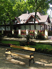 Bench under the shady trees - Siófok, Hungary