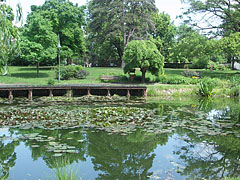 The beautiful small lake in the castle garden was originally part of the moat (the water ditch around the castle) - Szerencs, Hungary