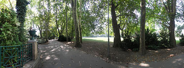 ××Margaret Island (Margit-sziget), Sycamore trees near the hotels - ブダペスト, ハンガリー