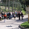 Visitors gathering at the enclosure of the brown bears - Veszprém, Мађарска